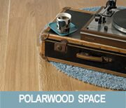 polarwood-space-180